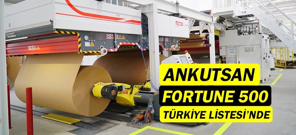 Ankutsan, Fortune 500 Türkiye listesinde