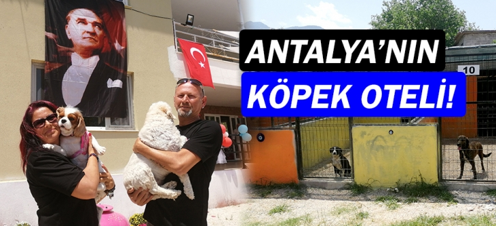 Antalya'da köpek oteli açıldı