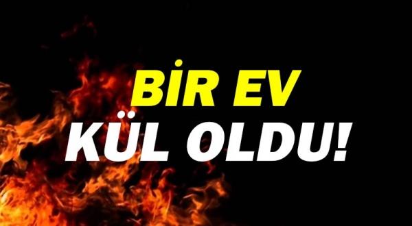 Antalya Kumluca'da yangın çıktı!