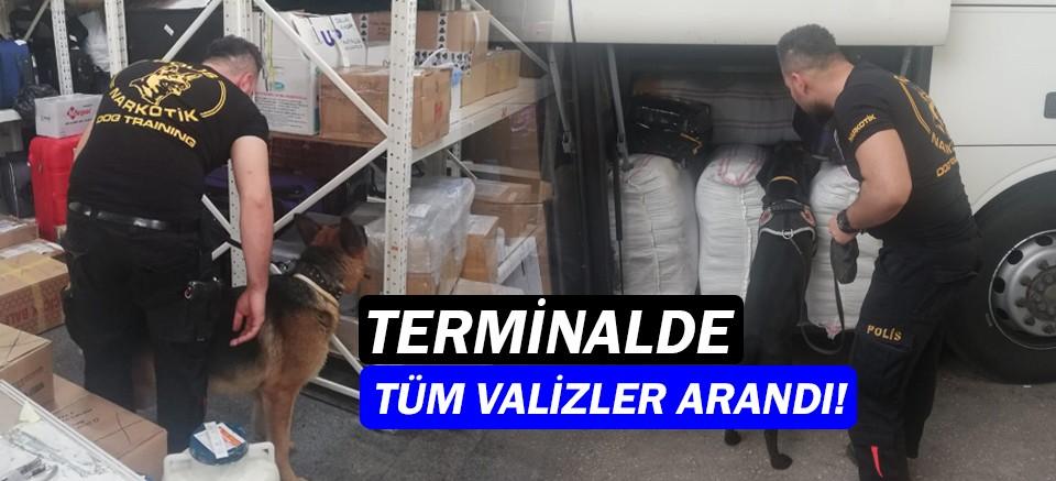 Antalya Terminali'nde uyuşturucu operasyonu