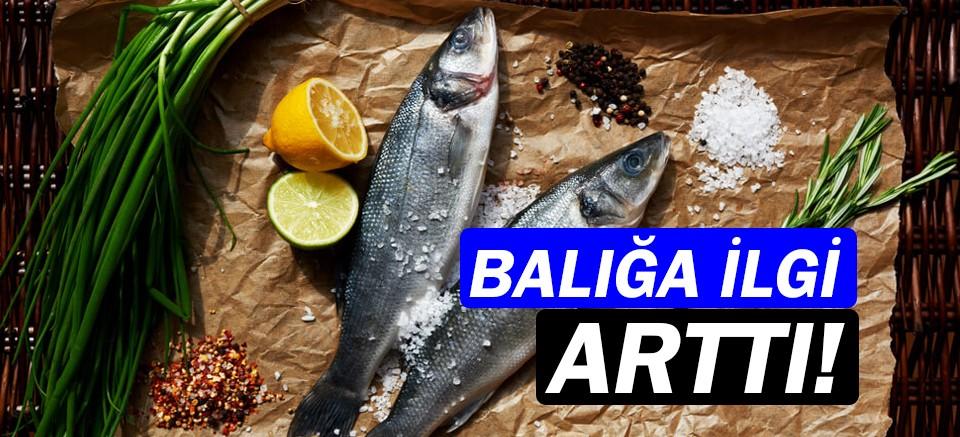 Balık tüketimi 2018 yılında yüzde 11,8 arttı