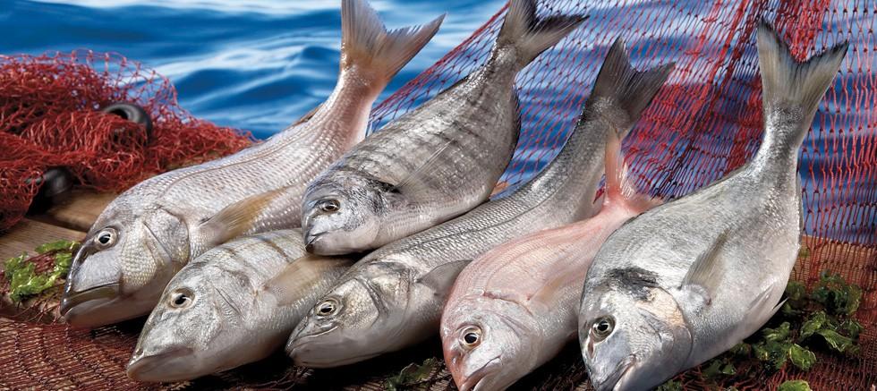 Balık, yumurta ve beyaz et corona virüse karşı ilaç gibi