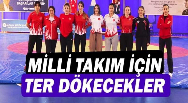 Büyükşehir'in kadın güreşçileri Milli Takım için ter dökecek!