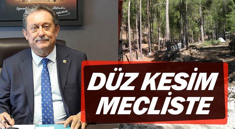 CHP Antalya Milletvekili Aydın Özer, Beycik köyündeki orman kesimini Meclis gündemine taşıdı.