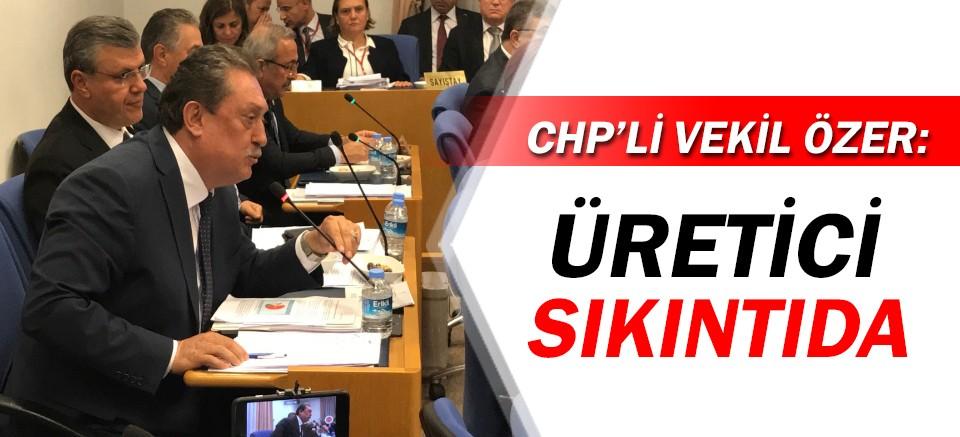 CHP'li Vekil Özer: Üretici büyük sıkıntıda!