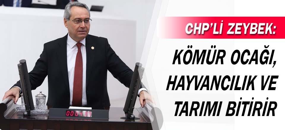 CHP'li Zeybek: Kömür ocağı, hayvancılık ve tarımı bitirir