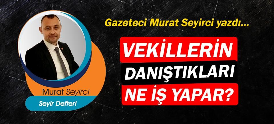 Gazeteci Murat Seyirci yazdı… Vekillerin danıştıkları ne iş yapar?