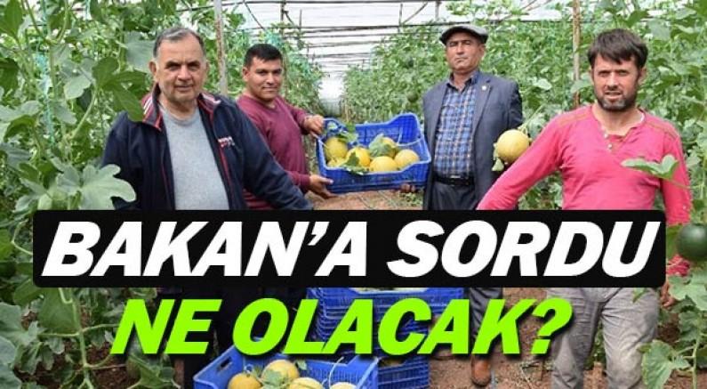 Hasan Subaşı İçişleri Bakanı Soylu'ya izne tabi çiftçilerin durumunu sordu