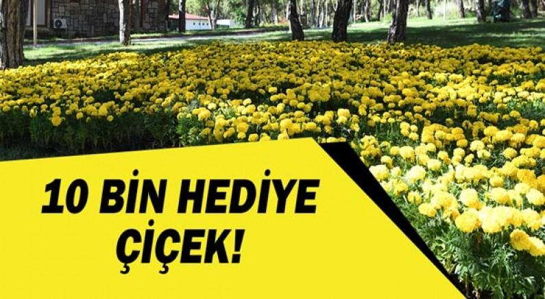 Konyaaltı'ndan vatandaşlara 10 bin hediye çiçek