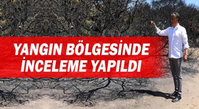 Lara'daki yangının ardından bölge incelendi.