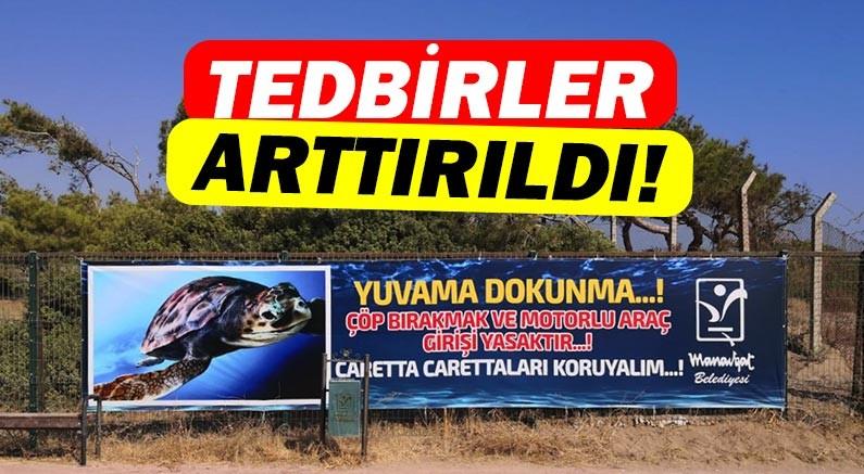 Manavgat Belediyesi caretta caretta yuvalarında tedbiri arttırdı!