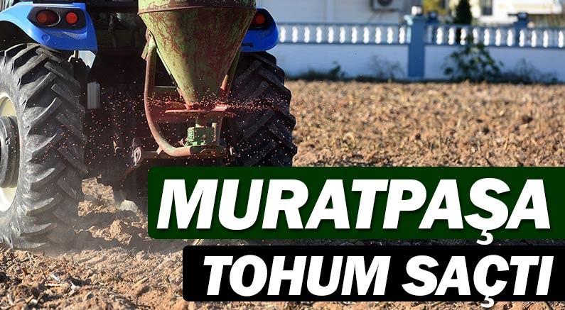 Muratpaşa Belediyesi tohum saçtı...