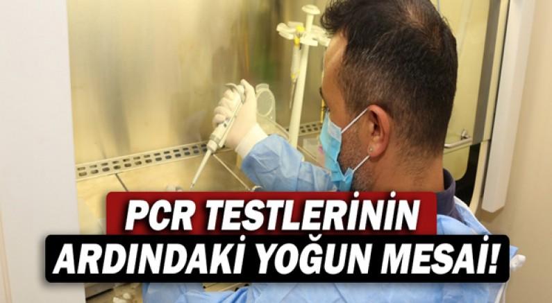 PCRT testlerinin ardındaki yoğun mesai!