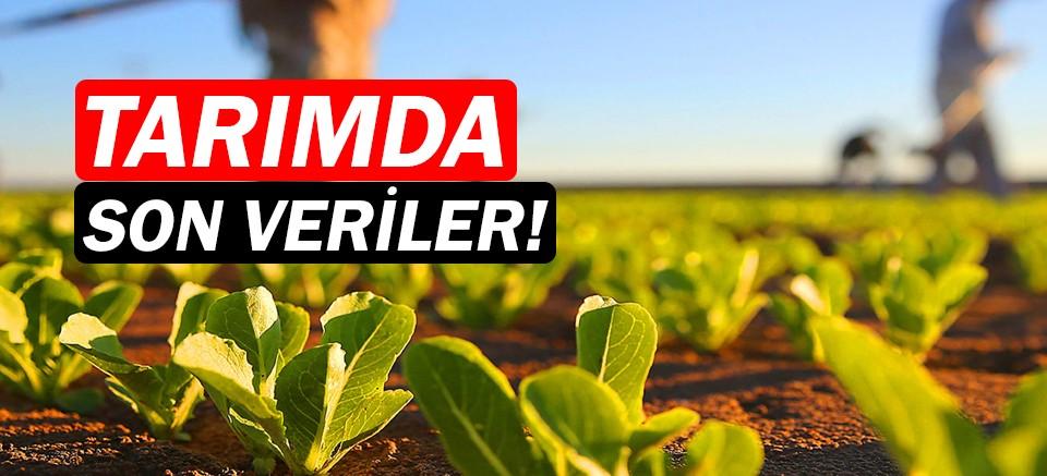 Tarım sektöründe son veriler açıklandı!