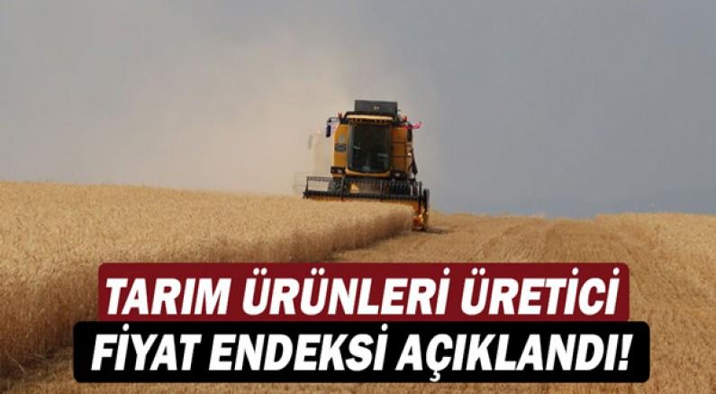 Tarım ürünleri üretici fiyat endeksi açıklandı!