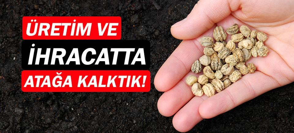 Türkiye, tohum üretimi ve ihracatında atağa kalktı