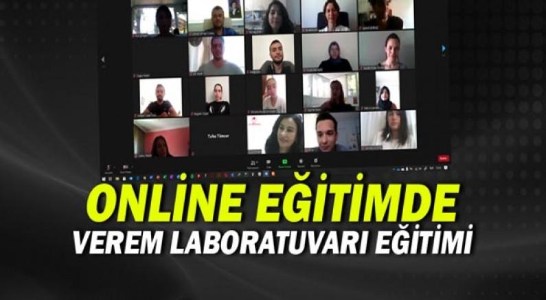 Verem Laboratuvarı Eğitim Programı Online Yapıldı