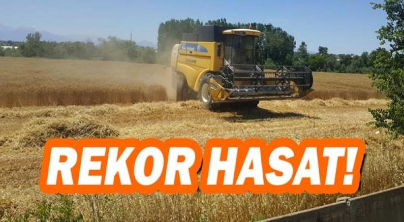 Ziraat Fakültesi buğday hasadında rekor kırdı